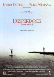 Cinemanet | Despertares