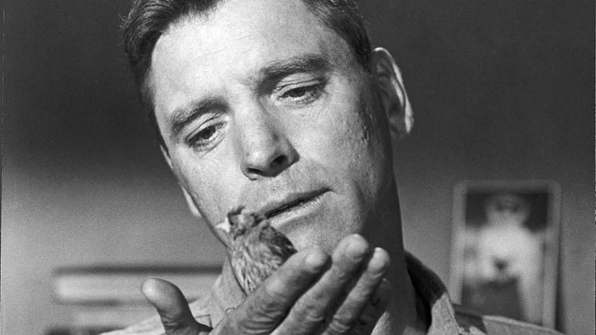 El hombre de alcatraz | Cinemanet
