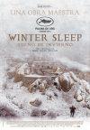 Cinemanet | Sueño de invierno