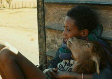 CinemaNet Efrain Etiopía Yared Zeleke