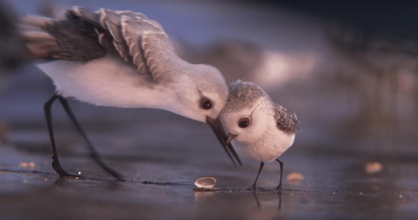CinemaNet Pixar Piper cortos